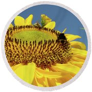 Sunflower Art Prints Honey Bee Sun Flower Floral Garden Round Beach Towel