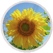 Sunflower Art Prints Sun Flower 2 Giclee Prints Baslee Troutman Round Beach Towel
