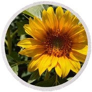 Sunflower Art- Summer Sun- Sunflowers Round Beach Towel