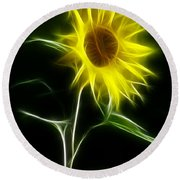 Sunflower Display Round Beach Towel
