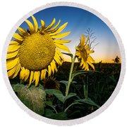 Sunflower Evening Round Beach Towel