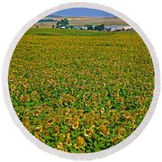 Sunflower Farm In Northwest North Dakota  Round Beach Towel