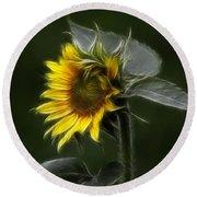 Sunflower Fractalius Beauty Round Beach Towel