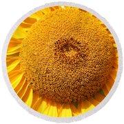 Sunflower Head  Round Beach Towel