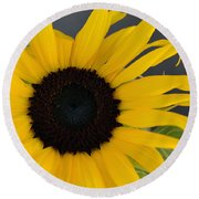 Sunflower II Round Beach Towel