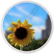 Sunflower In Providence Round Beach Towel