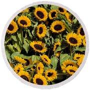 Sunflower Near Van Gogh Museum Round Beach Towel