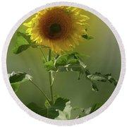 sunflower No. 10 Round Beach Towel