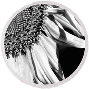 Sunflower Petals In Black And White Round Beach Towel