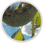 Sunflower Seeds Round Beach Towel