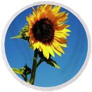Sunflower Stand Alone Round Beach Towel