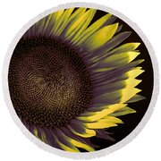 Sunflower Dawn Round Beach Towel