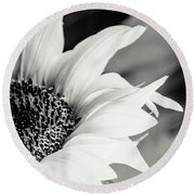 Sunflowers 16 Round Beach Towel