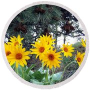 Sunflowers And Pine Cones Round Beach Towel by Will Borden