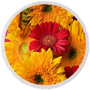 Sunflowers And Red Mums Round Beach Towel