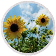 Sunflowers And The Bee Round Beach Towel