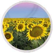 Sunflowers At Sunrise Round Beach Towel