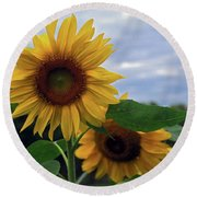 Sunflowers Close Up Round Beach Towel