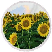 Sunflowers In The Clouds Round Beach Towel