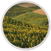 Sunflowers In The Palouse Round Beach Towel