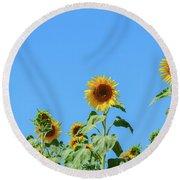 Sunflowers On Blue Round Beach Towel