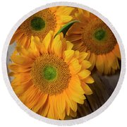 Sunflowers On White Boards Round Beach Towel