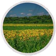 Sunflowers Weldon Spring Mo_dsc9830_16 Round Beach Towel