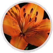 Sunkissed Lily Round Beach Towel