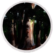 Sunlight And Shadows - Eucalyptus Majesties Round Beach Towel