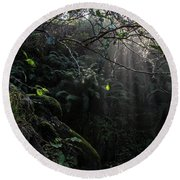 Sunlight Falling Into Glen With Bright Leaves, Vertical Round Beach Towel