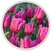 Sunlight On Pink Tulips Round Beach Towel