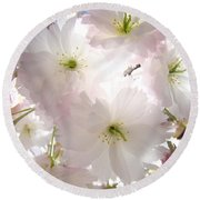 Sunlit Pink Blossoms Art Print Spring Tree Blossom Baslee Round Beach Towel