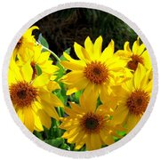 Sunlit Wild Sunflowers Round Beach Towel