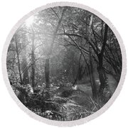 Sunlit Woods, West Dipton Burn Round Beach Towel