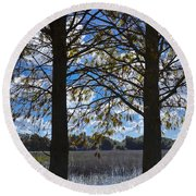 Sunny Day On The Pond Round Beach Towel