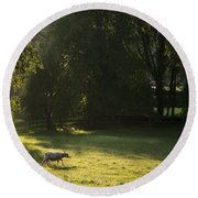 Sunny Evening Round Beach Towel