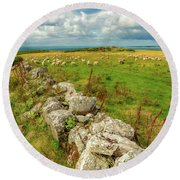 Sunny Meadow Sheep Round Beach Towel