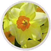 Sunny Narcissus Round Beach Towel