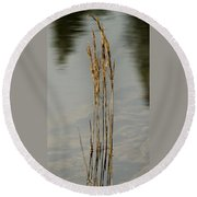 Sunny Reeds Reflect Round Beach Towel