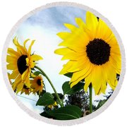 Sunny Slopes Round Beach Towel