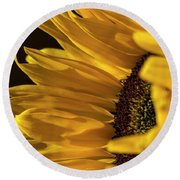 Sunny Too By Mike-hope Round Beach Towel