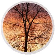 Sunrise December 16th 2010 Round Beach Towel by James BO  Insogna