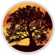 Sunrise Gum Round Beach Towel