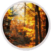 Sunrise Mist Through The Trees Round Beach Towel