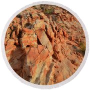 Sunrise On Colorful Sandstone In Valley Of Fire Round Beach Towel