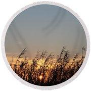 Sunset And Palm Grass Round Beach Towel