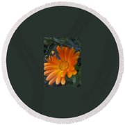 Sunset Daisy Round Beach Towel