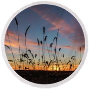 Sunset In The Weeds Round Beach Towel