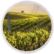 Sunset On A Vineyard Round Beach Towel