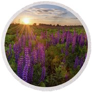 Sunset Over Meadow Of Lupine Round Beach Towel